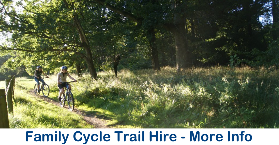 family cycle trail bike hire